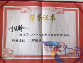 """冠军国际betcmp荣获2018年度""""先进基层党组织""""""""优秀党务工作者""""等荣誉"""